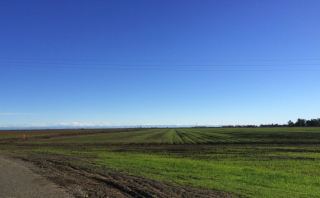 West from Rd 30B - Sac skyline
