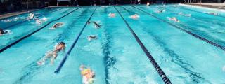 DAM-pool