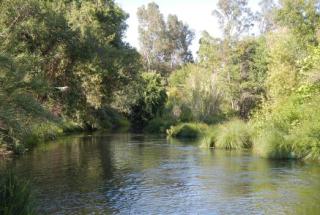 Putah-creek-friends2
