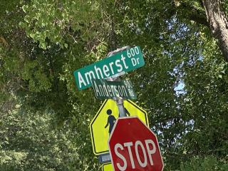 Amherst crop